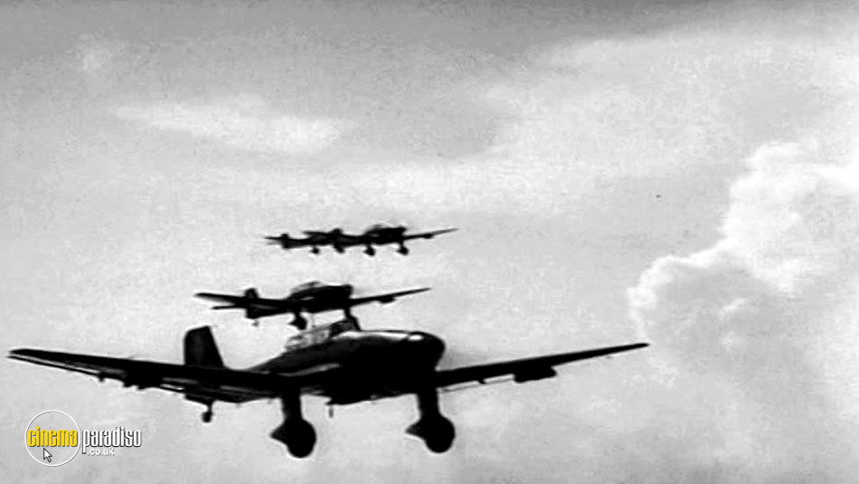 Stuka: The Aircraft and the Aces online DVD rental