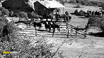 A still #8 from Five Guns to Tombstone (1960)