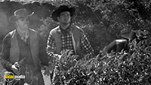 A still #7 from Five Guns to Tombstone (1960)