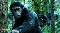 A still #5 from Dawn of the Planet of the Apes (2014)