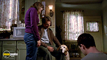 A still #5 from A Dog Named Christmas (2009)