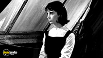 A still #36 from The Diary of Anne Frank (1959)