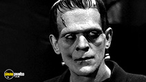 A still #2 from Frankenstein (1931)