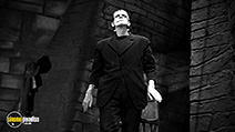 A still #6 from Frankenstein (1931)