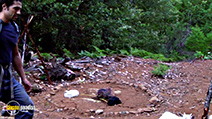 A still #4 from The Bigfoot Tapes (2012)