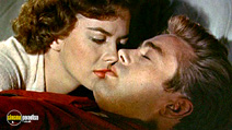 Still #4 from Rebel Without a Cause