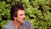 A still #23 from Magnum P.I.: Series 6 (1985)