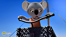 A still #2 from Blinky Bill: The Movie (2015)