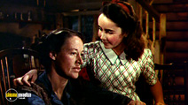 Still #8 from National Velvet