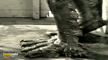 Still #5 from Creature from the Black Lagoon
