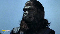 Still #3 from Planet of the Apes