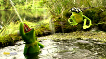 Still #4 from Kermit's the Swamp Years