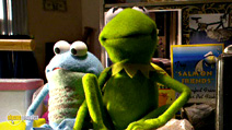 Still #5 from Kermit's the Swamp Years
