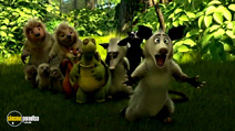 Still #4 from Over the Hedge