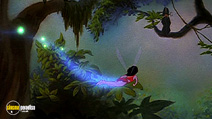 Still #5 from Ferngully the Last Rainforest