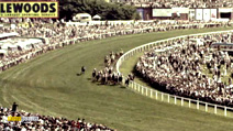 Still #8 from History of Horse Racing
