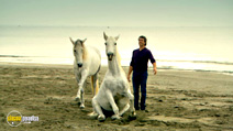 Still #6 from Horsepower with Martin Clunes
