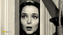 Still #2 from The Addams Family: Series 1
