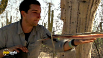 Still #6 from Bear Grylls: Born Survivor: Series 3