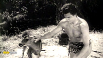 Still #2 from Tarzan the Fearless / Tarzan and the Trappers