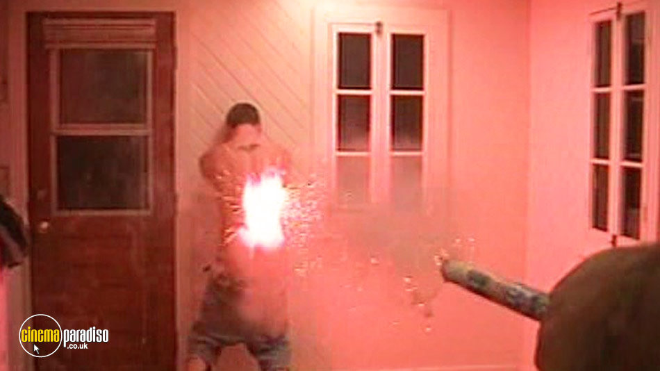 Steve-O: Don't Try This at Home! online DVD rental