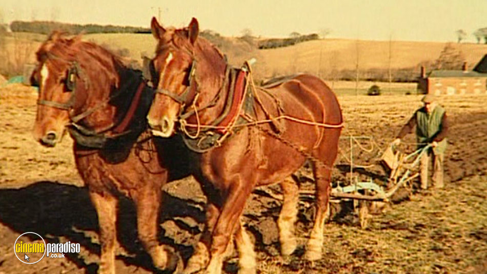 A Man for All Seasons: Roger Clark - Traditional Farmer and Farrier online DVD rental