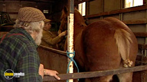 Still #6 from A Man for All Seasons: Roger Clark - Traditional Farmer and Farrier