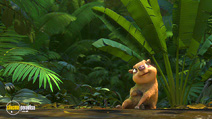 Still #1 from Rio 2