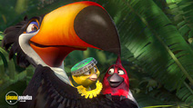 Still #5 from Rio 2