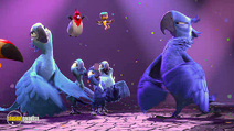 Still #6 from Rio 2