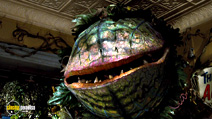 A still #22 from Little Shop of Horrors