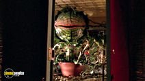 A still #20 from Little Shop of Horrors