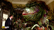 A still #25 from Little Shop of Horrors with Rick Moranis