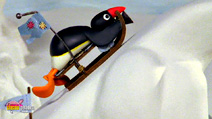 Still #1 from Pingu: Sledge Academy