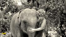 Still #8 from Tarzan's Secret Treasure/Tarzan's New York Adventure