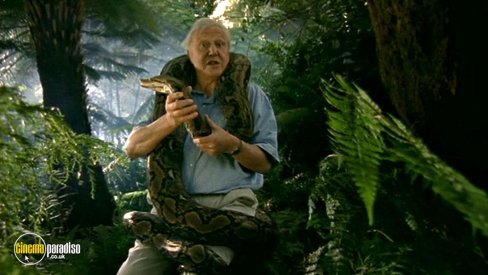 Wildlife Special: Serpent online DVD rental