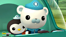 Still #2 from Octonauts: Here Come the Octonauts
