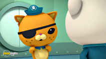 Still #5 from Octonauts: Here Come the Octonauts