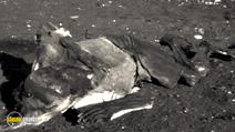 Still #6 from The Galapagos Affair: Satan Came to Eden