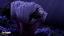 Still #1 from Finding Nemo