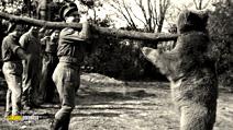 Still #6 from Wojtek: The Bear That Went to War