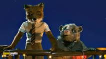 Still #4 from Fantastic Mr. Fox
