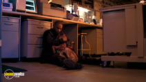 A still #13 from I Am Legend with Will Smith