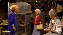 Still #5 from The Golden Girls: Series 2