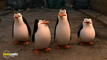 Still #4 from Penguins of Madagascar