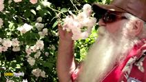 Still #3 from I Am Santa Claus