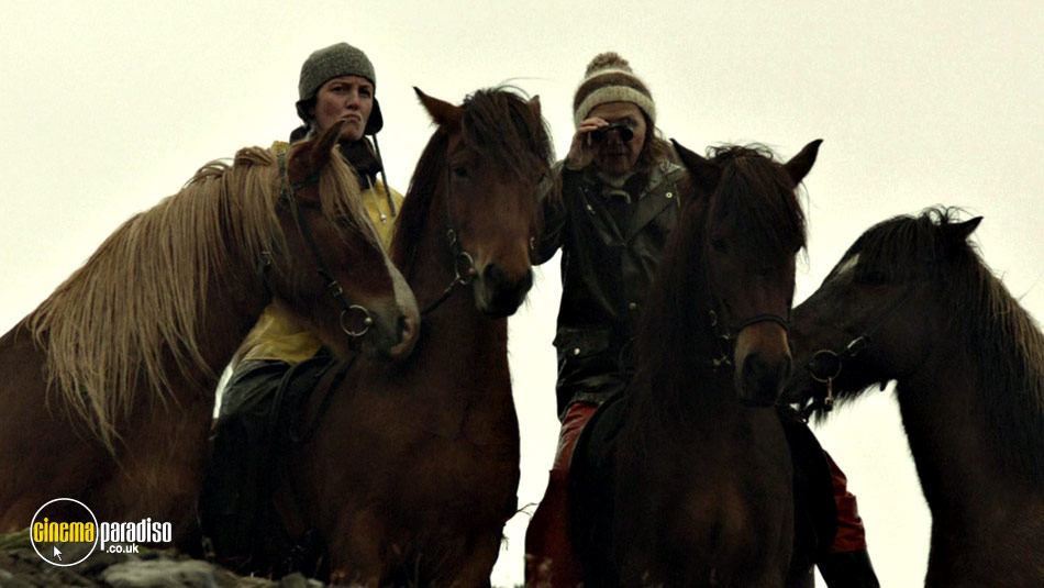 Still from Of Horses and Men 1