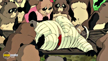 Still #3 from Pom Poko