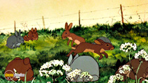 Still #8 from Watership Down