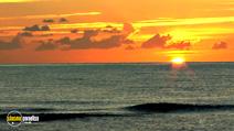 Still #1 from Four Seasons: Sunlit Summer